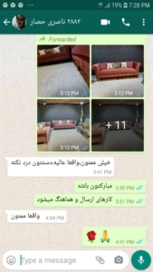 ناصری حصار 169x300 - خانم ناصری حصار